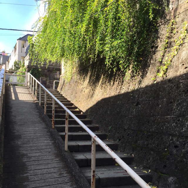 ジグザグ階段♪