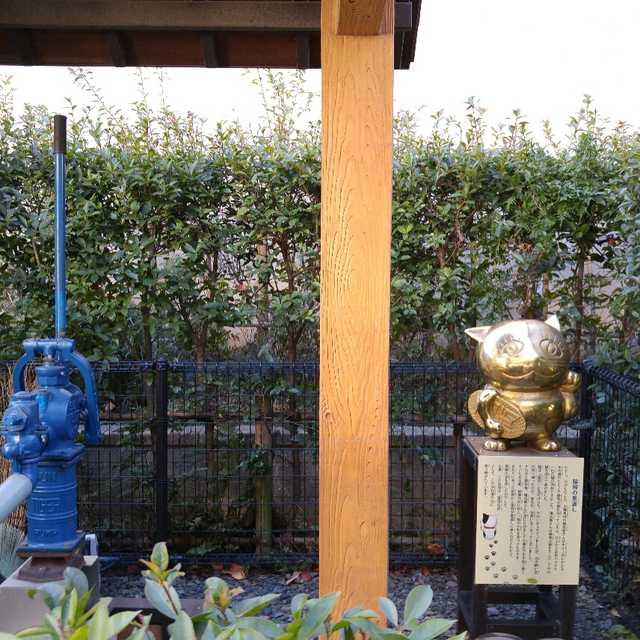 猫飛(ニャンピー)と井戸