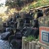 玉川上水 復活の滝