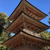 安楽寺三重塔