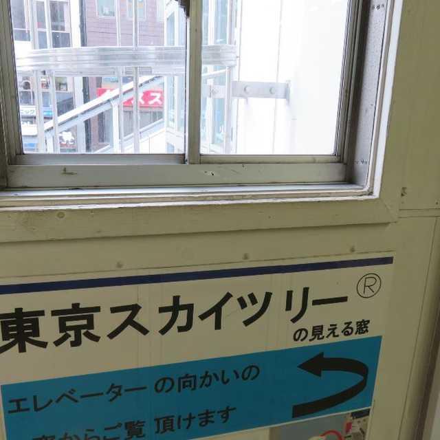 東京スカイツリーの見