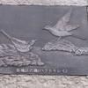板橋区の鳥