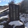 エドヒガン桜植樹記念碑