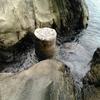 海の道~杭