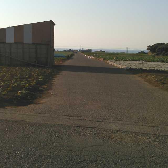三戸の畑道