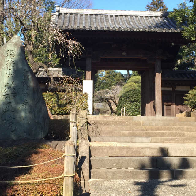 薬王院(東長谷寺)
