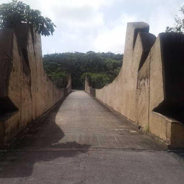 巨大丸太の橋