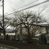 稲藤の石塔群。