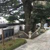 金剛寺の三木