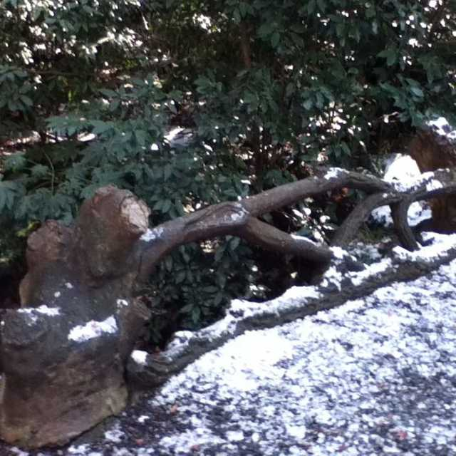 日本初の擬木の橋