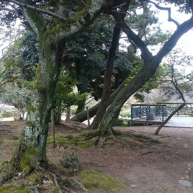 私立名古屋図書館跡