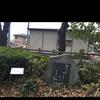 水原秋桜子の句