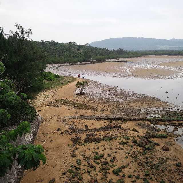 名蔵川のアンパル