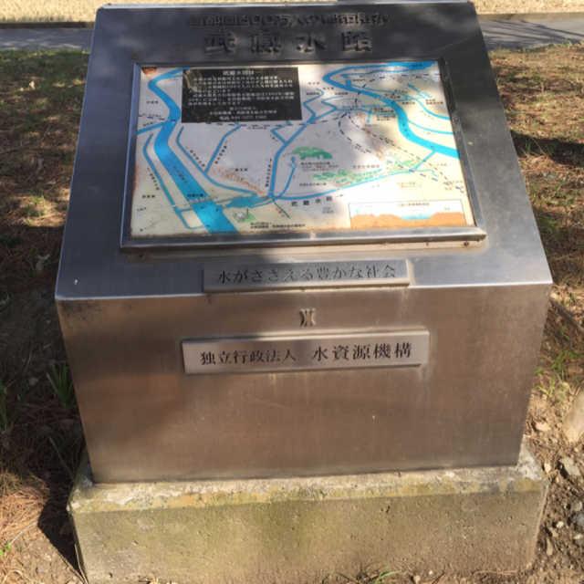 武蔵水路は利根川と荒