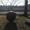 球又は立方体