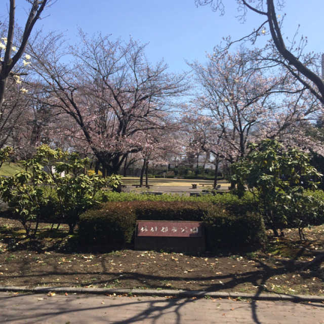 姉妹都市公園