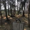 古河総合公園の雑木林