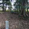 駒ケ先の森