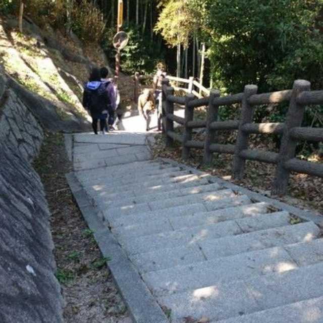 崖を降りるような階段