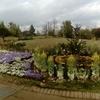 ゆいの花公園