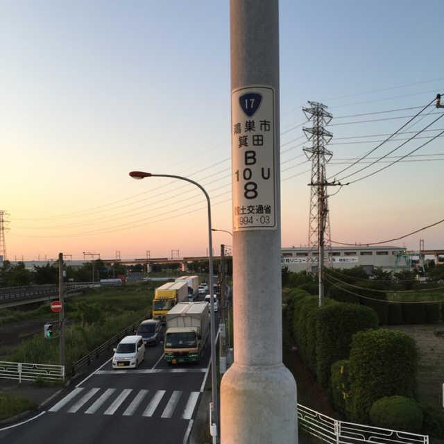 歩道橋の街灯④