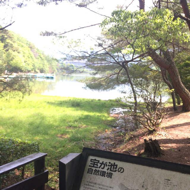 京都、宝が池