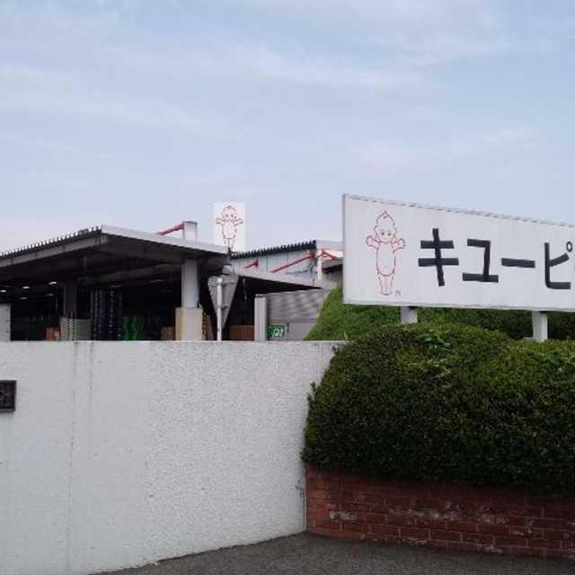 キューピー五霞工場