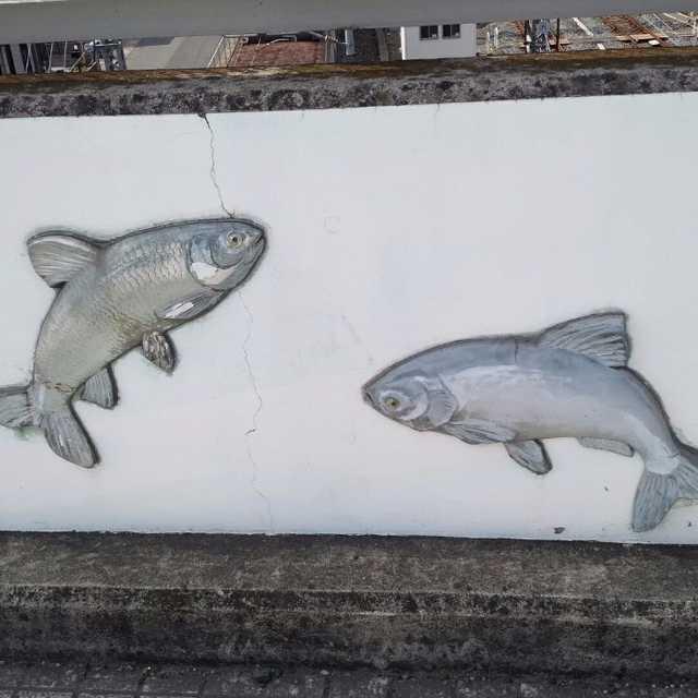 跨線橋の魚