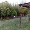 竹と親しむ広場