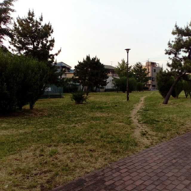 分散する公園