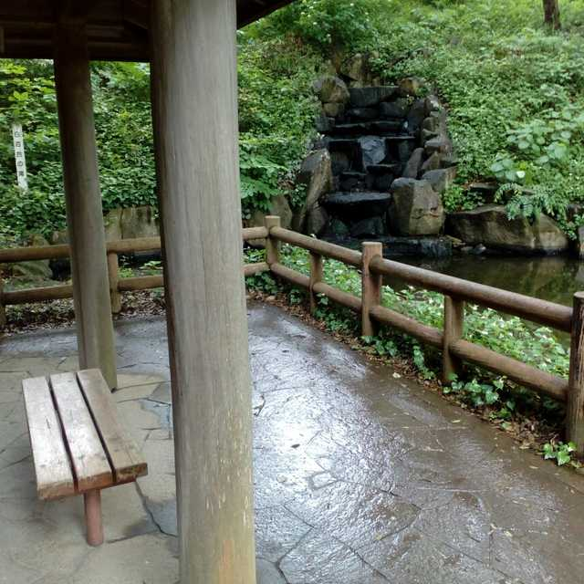 しらゆりの滝