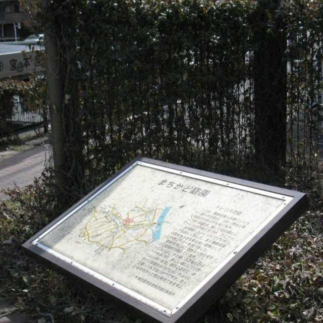 トレリスの庭