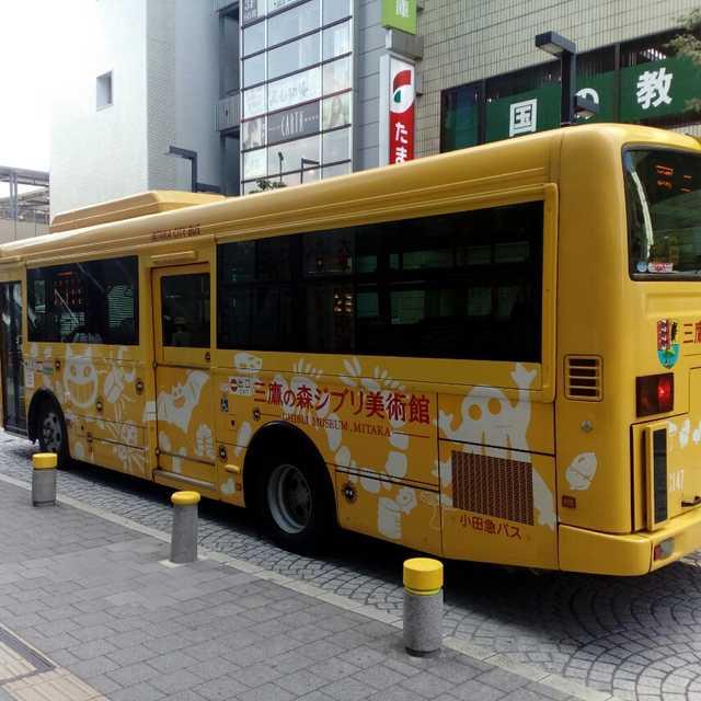 これはねこバスですか?