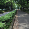 富士見緑地通り