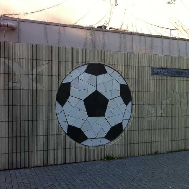 大きなサッカーボール