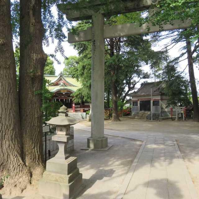 葛西神社の弥栄銀杏(