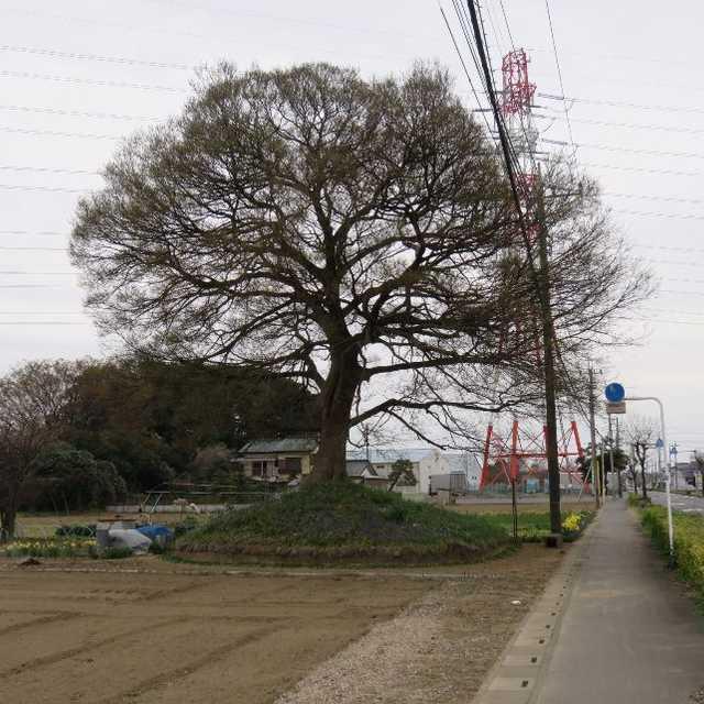 下野田の一里塚
