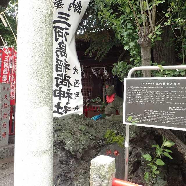 三河島菜と枝豆