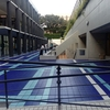 東京大学プール