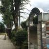 日本一長いけやき並木