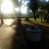 尾久の原公園