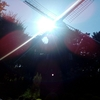 夏の日の風車