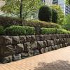 三十間堀の護岸の石
