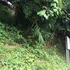 坂西横穴墓群