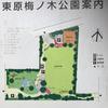 東原梅ノ木公園