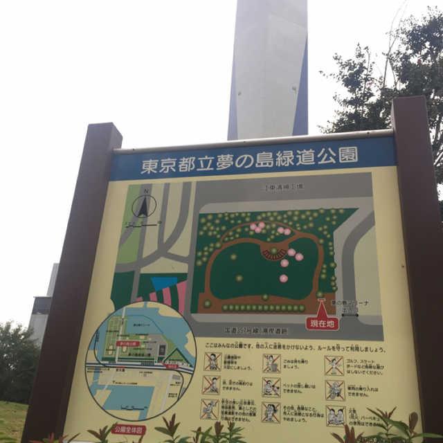 東京都立夢の島緑道公
