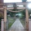 八雲神社のイチョウ