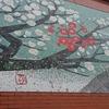 紅白梅の咲き誇る