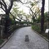 五反田公園の桜並木