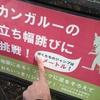 目指せワールドレコード!
